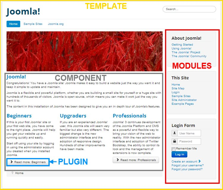 Joomla dating module