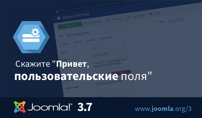 Joomla-3.7-custom-fields-700x410-ru.jpg