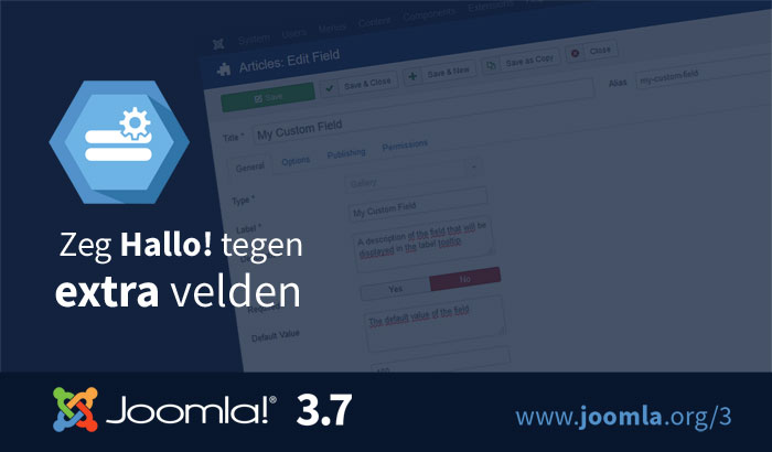 Joomla-3.7-custom-fields-700x410-nl.jpg