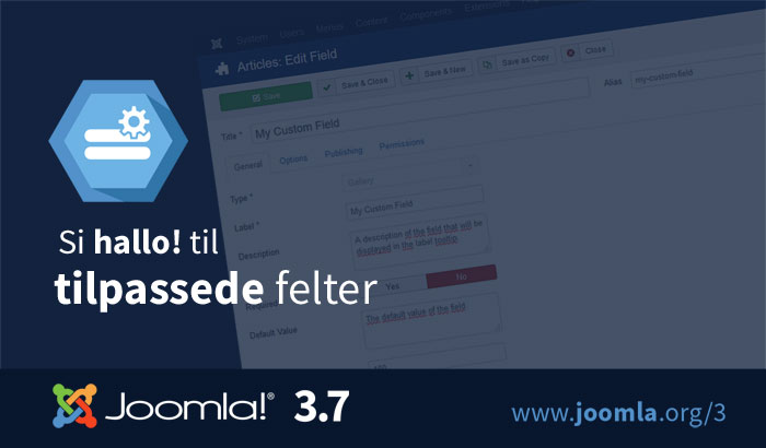 Joomla-3.7-custom-fields-700x410-nb.jpg