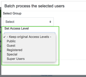 Access level using batch processing