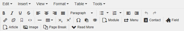 Help30-редактор TinyMCE продвинутый-en.png